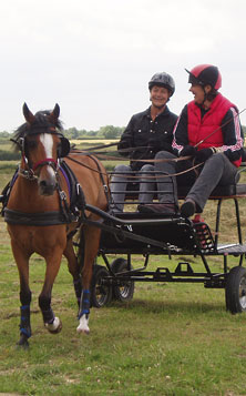 A newcomer to Carriage Driving, having a Carriage Driving Lesson at Bennington Centre