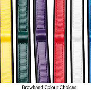 Coloured Browband