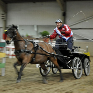 April 2012 - Indoor Carriage Driving Championship