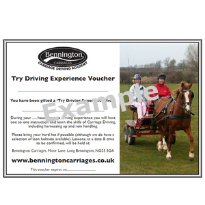 'Try Carriage Driving' Gift Voucher