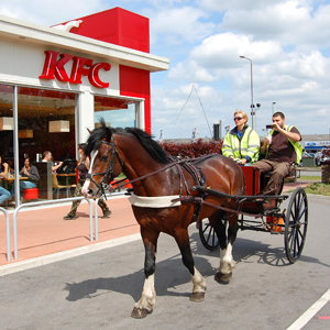 Kentucky Fried Carriage ...