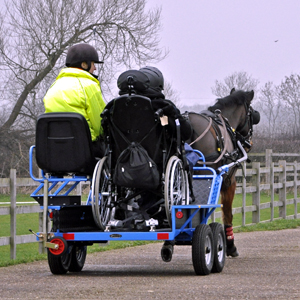 Wheel chair and semi ambulant carriages