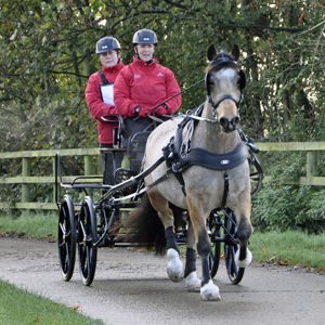 Carriage Driving - December 2014