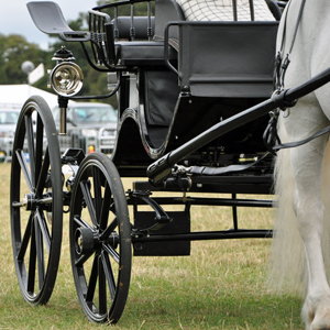 Carriage Close up