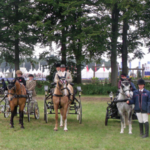 FEI World Para - Equestrian Driving Championships