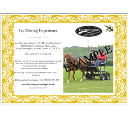 'Carriage Driving' Gift Voucher
