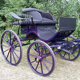 Pairs Presentation Carriage